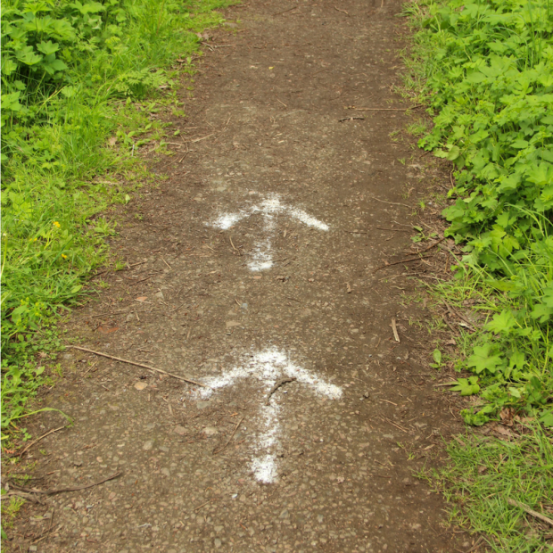 Midlife Monday - Arrow Path